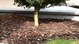 Baustoffe Nussbaumer - Der Frühling ist da!