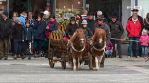 Pferdemarkt Ried
