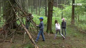 Der geheimnisvolle Märchenwald von St. Marienkirchen