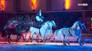 Nacht der Pferde 2017