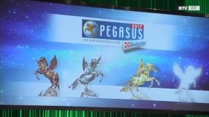 Pegasus Award 2017