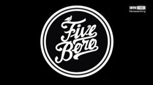 Five Boro - ein europaweit einzigartiges Projekt entsteht in Gmunden