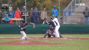 Wer wird Österreichischer Baseball-Staatsmeister 2017?