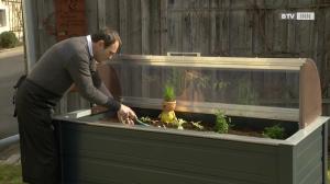 Hochbeet – das bequemste Beet für Garten und Balkon