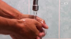 Allergien nehmen zu -  Zuviel Hygiene?