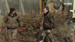 Vom Wald ins Schloss - Hannes Gadermair