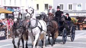 Pferdemarkt Ried 2018